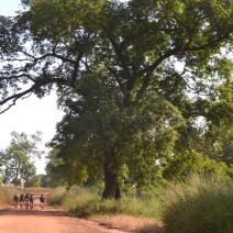 8 ena Pedalada Solidària pel Senegal
